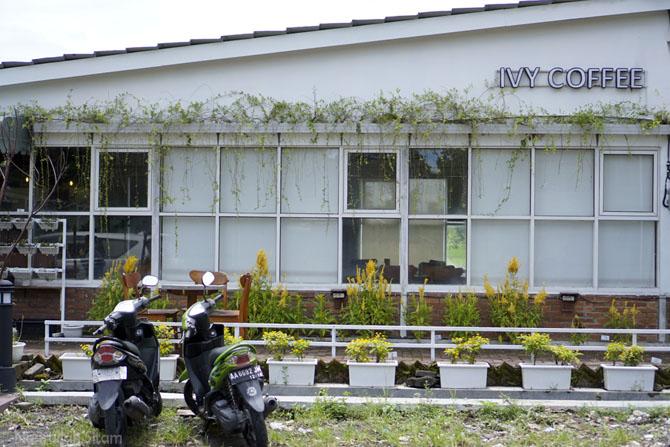 English Ivy Coffee Jogjakarta - ViewJogja.com